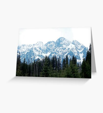 Mountains Forest Greeting Card