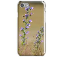 The fluorescence of Vipers bugloss  iPhone Case/Skin