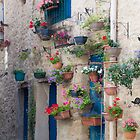 Window boxes by Alex  Motley