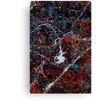 Fragile 512 Canvas Print