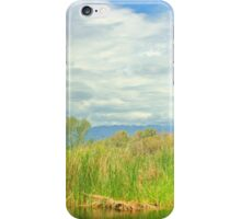 At The Pond iPhone Case/Skin