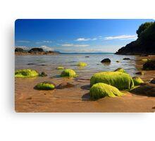 Fintragh Bay Beach Canvas Print