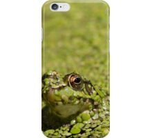 Buggin' iPhone Case/Skin