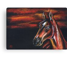 Red horse_Pastel painting_My favorite animals Canvas Print