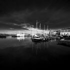 Padstow Black  by Rob Hawkins
