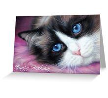 Ragdoll Cat Birthday Card Greeting Card