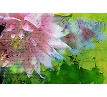 Postmarked with Love Photographic Print