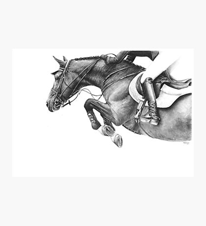 Flick - Showjumping Horse Photographic Print