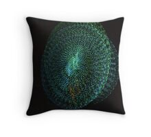 OCF Nightscapes '14-2 Throw Pillow