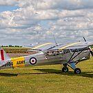 Beagle A.61 Terrier 2 G-ASOI/WJ404 by Colin Smedley