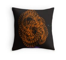 OCF Nightscapes '14-26 Throw Pillow
