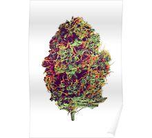 Sticky Bud #23 Poster