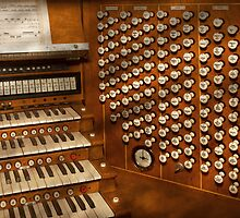 Organist - Ready at the controls by Mike  Savad