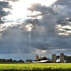 Blanketing the Farm by Brian Gaynor