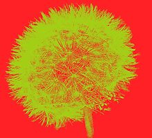 Dandelion Pop in Red and Cream by Kadwell