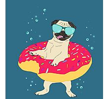 donut pug - lifebuoy Photographic Print