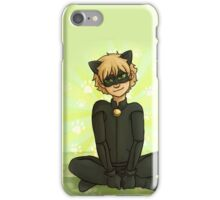 Chat Noir iPhone Case/Skin