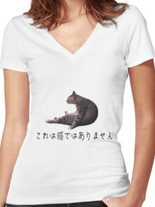 This is NOT a cat Women's Fitted V-Neck T-Shirt