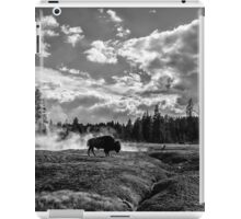 Lonely Bison iPad Case/Skin