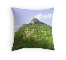 Grandfather Summer Throw Pillow