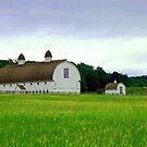 for the love of barns by Lynne Prestebak