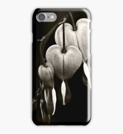 Bleeding Hearts (Dicentra) flowers in black and white iPhone Case/Skin
