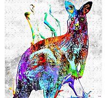 Kangaroo Grunge Photographic Print