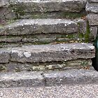 Vintage Steps by phil decocco