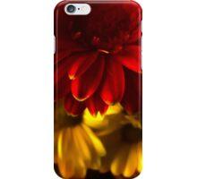 Gerbera and Daisy iPhone Case/Skin