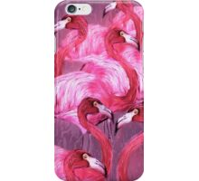 Flamingo Ar by  Barbara Chichester iPhone Case/Skin