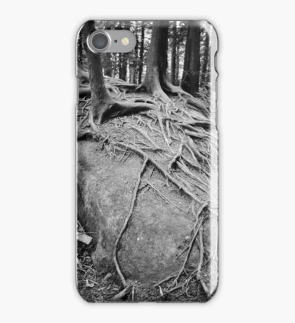 Lost Lake, Larrabee State Park, Washington State iPhone Case/Skin