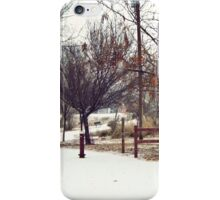 Snow Towns in Winter iPhone Case/Skin