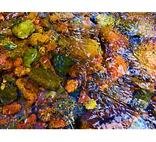 """""""River Rock Abstract 11"""" Photographic Print"""