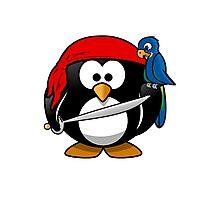 Penguin and Bird !  Photographic Print