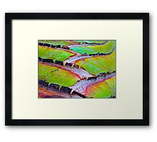 """""""Palm Abstract Detail"""" Framed Print"""