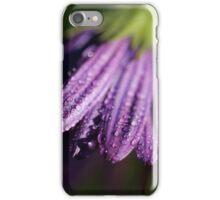 Daisy Thaw iPhone Case/Skin