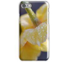 Frosty Jonquils iPhone Case/Skin