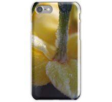 Frosty Jonquils 2 iPhone Case/Skin