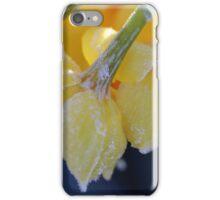 Frozen jonquils 3 iPhone Case/Skin