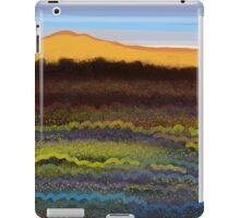 IPad Art - Winter Light iPad Case/Skin