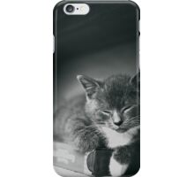 Kitten iPhone Case/Skin