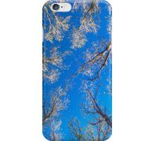 Tree Tops iPhone Case/Skin