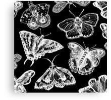 Gothmoths & Butterflies Canvas Print