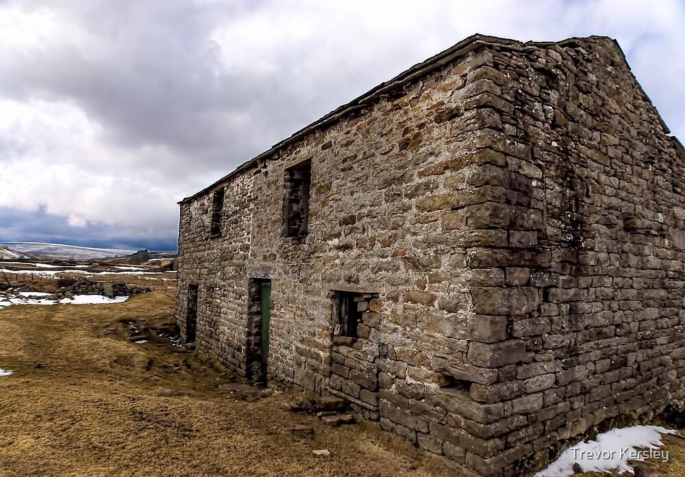 The Barn Swaledale by Trevor Kersley