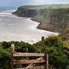 Walk to Whitby by emmawind