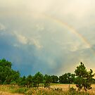 Just Another Colorado Rainbow by Bo Insogna