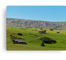 Houses in green valley in the mountains (Italy) Canvas Print