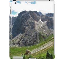 View from the top of a mountain 2 iPad Case/Skin