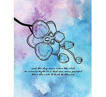 Anais Nin - Orchid Blossom Photographic Print