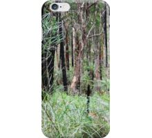 Forrest Trails, Otway Ranges, VIC iPhone Case/Skin